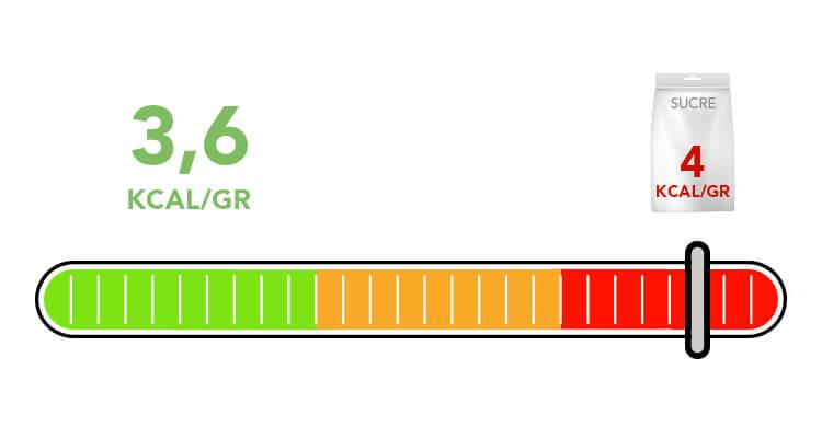 sirop-agave-calories